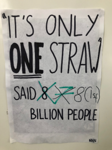 Geo Eco poster straw