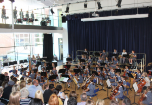 percussion and orchestra