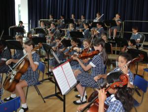 NHEHS Junior orchestra