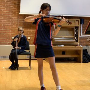 Viola endangered instruments Y7